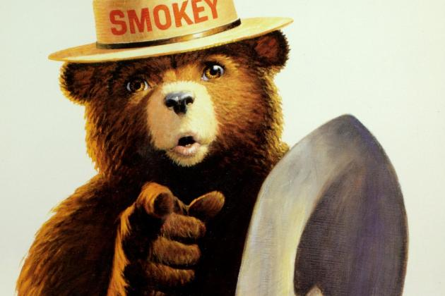 """1989; Smokey Bear poster showing a half body image of Smokey pointing at the audience with one hand while holding a shovel in the other hand. Poster reads """"Only You"""". This work is maintained in the National Agricultural Library, in Beltsville, MD."""